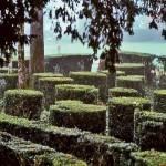 Domme-Parc-et-jardin-de-buis-du-Chateau-de-Caudon