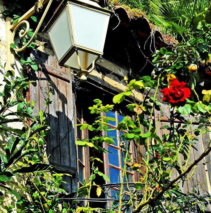 jardins-exotique_jardin-exotique_Roque_Gageac_dordogne_perigorjardins-exotique_jardin-exotique_Roque_Gageac_dordogne_perigor