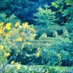 Les jardins de cadiot_dordogne_perigord