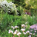 jardins-exotique_jardin-exotique_Roque_Gageac_dordogne_perigor