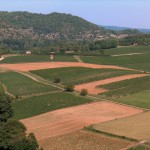 Vineyards_in_Cahors