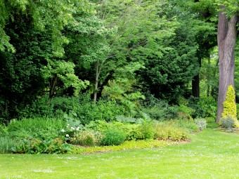 Crit res de recherche for Arbres jardin du luxembourg