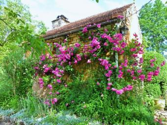 jardin_de_la_daille_dordogne_perigord